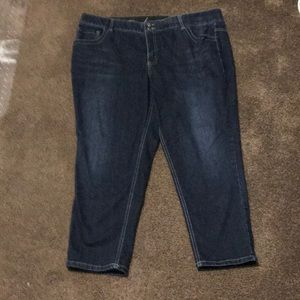 Layne Bryant Skinny Jeans size 22
